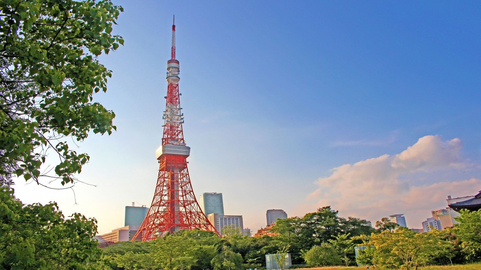 Tokyo Tower - Local Area JP